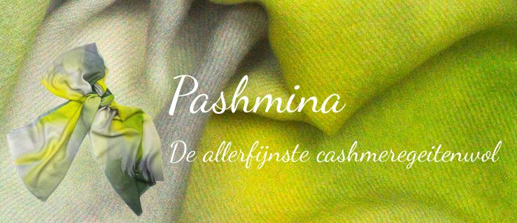 Pashmina - de allerfijnste cashmeregeitenwol
